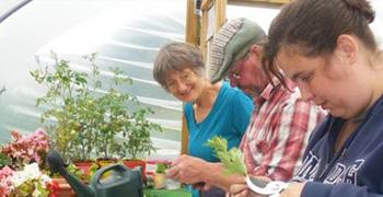 gardening mentoring service